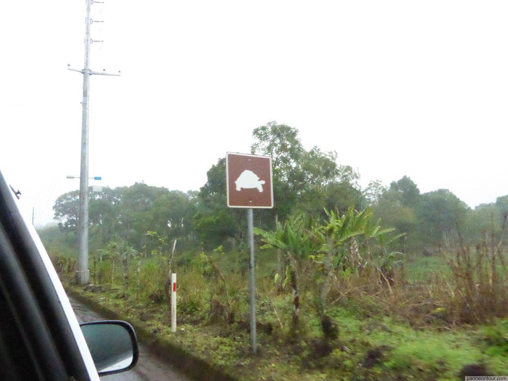 P1200596_Galapagos_Wasserzeichen